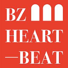 BZ heartbeat